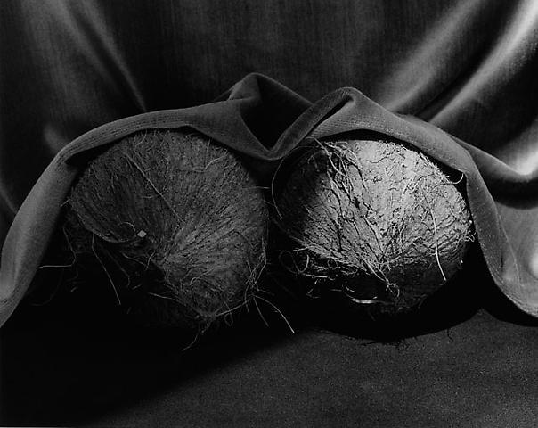 <i>Coconuts</i>, 1985