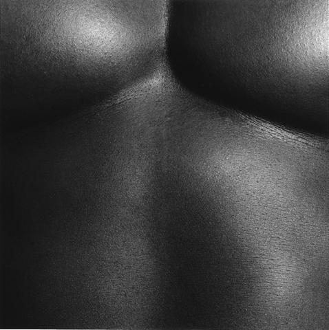 &lt;i&gt;Chest / Livingston&lt;/i&gt;, 1988