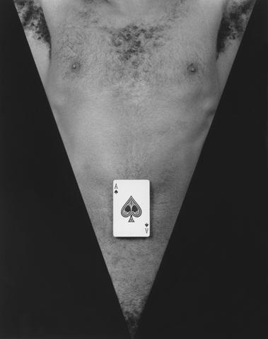 <i>Jack Walls</i>, 1983