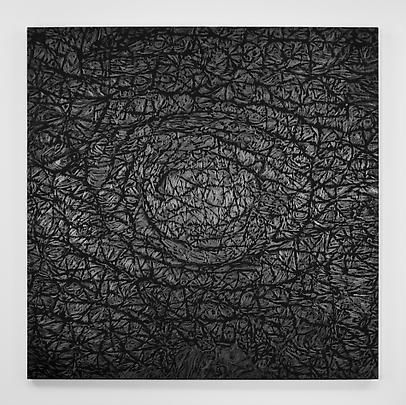 <b>Pelle di grafite - Riflesso di Fuchsite</b>, 2007 Image