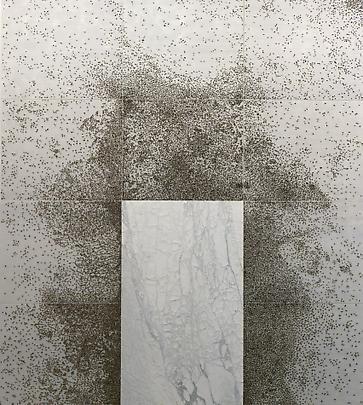 <b>Pelle di Marmo su Spine d'Acacia</b>, 2001 Image
