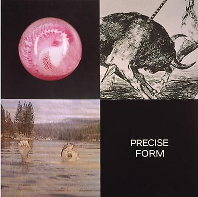 <b>Tetrad Series: Precise Form</b>, 1999 Image