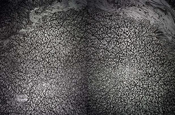 <b>Pelle di grafite – Riflesso di Tridimite</b>, 2007 Image
