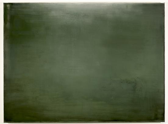 <b>VERT DE GRIS (Painting for the green room of a schizophrenic)</b>, 2007 Image
