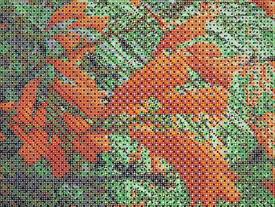 Fluttering Flowers, 2011 Image