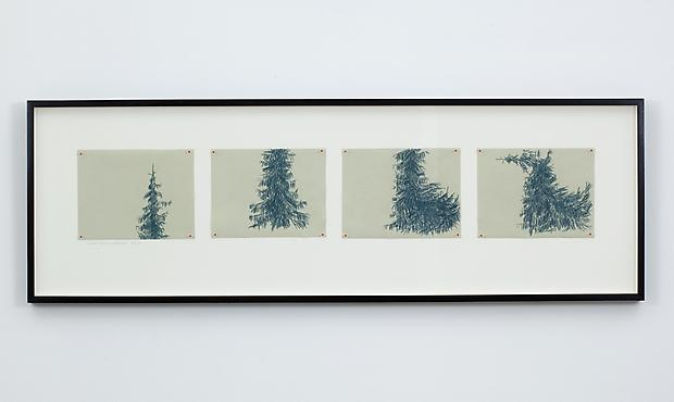 Anthropomorphic Exercises (On Film) Series A: Aspect Ratio / Kneeling Spruce, 2011 Image