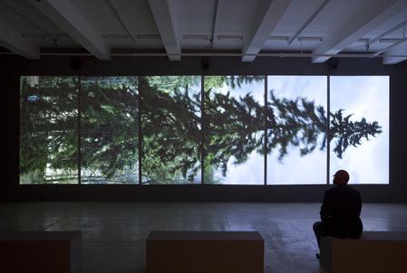 Eija-Liisa Ahtila at Hämeenlinnan Taidemuseo, Hämeenlinna, Finland