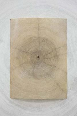 <b>Propagazione</b>, 2011 (detail) Image