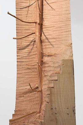 <b>Nel legno</b>, 2008 (detail) Image