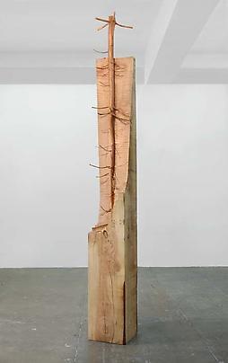 <b>Nel legno</b>, 2008 Image