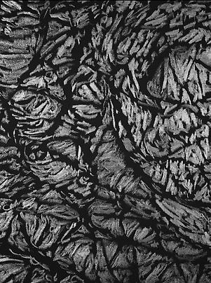 <b>Pelle di grafite - Riflesso di Fuchsite</b> (Detail), 2007 Image