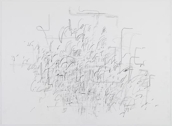 <i>Mind Breath Drawing</i>, 2012 Image