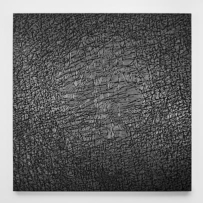 <b>Pelle di grafite - Riflesso di Prehnite</b>, 2007 Image