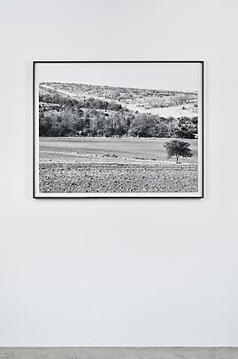 <i>Landscape with lavatories, Frankfort Resettlement Camp, Frankfort Ciskei, 12 July 1983</i> Image