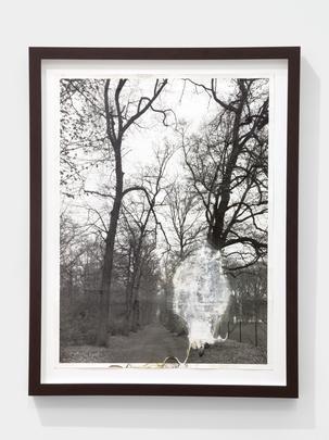 <i>Untitled</i>, 1993 Image
