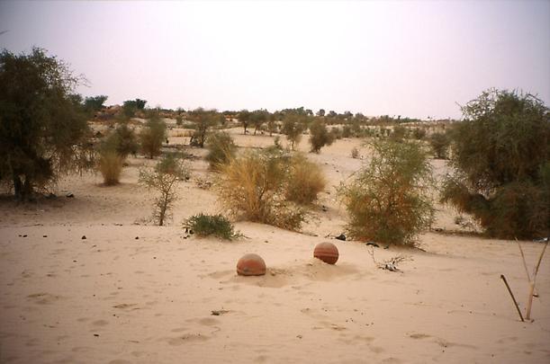<b>Cemetery 5</b>, 2002 Image