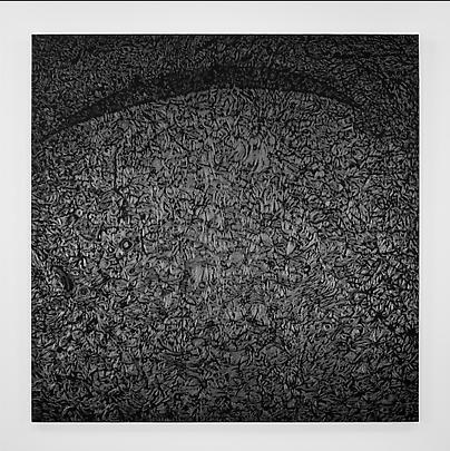 <b>Pelle di grafite - Riflesso di Allanite</b>, 2007 Image