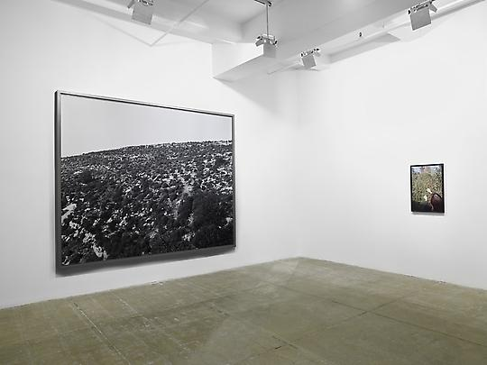 Installation View North Gallery Viewing Room Image