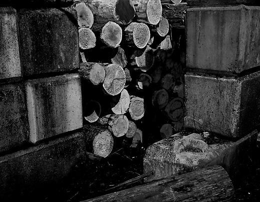 <b>Logs</b>, 2002 Image