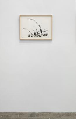 <i>Untitled</i>, 1984 Image