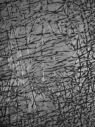 <b>Pelle di grafite - Riflesso di Prehnite</b> (Detail), 2007 Image