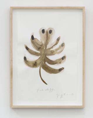 <i>Gli ocche della foglia (The Eyes of the Leaves)</i>, 1993 Image