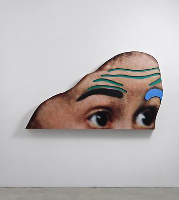 <b>Raised Eyebrows/ Furrowed Foreheads: (Black and Blue Eyebrows)</b>, 2008 Image