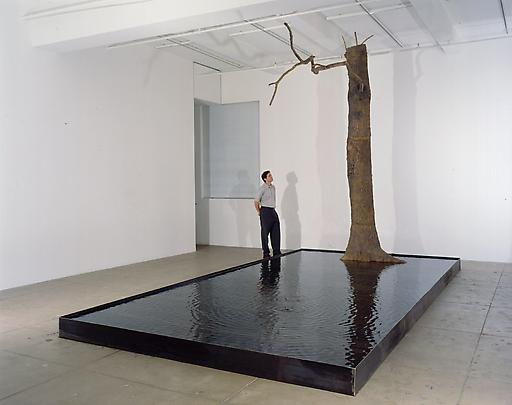 <b>Linee d'Acqua (Lines of Water)</b>, 1999 Image