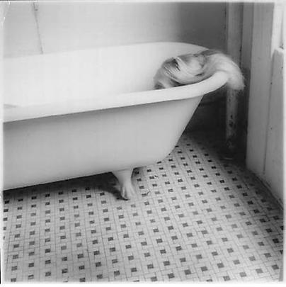 <i>Untitled, New York (N.389)</i>, 1980 Image