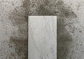 Giuseppe Penone - Marian Goodman Gallery