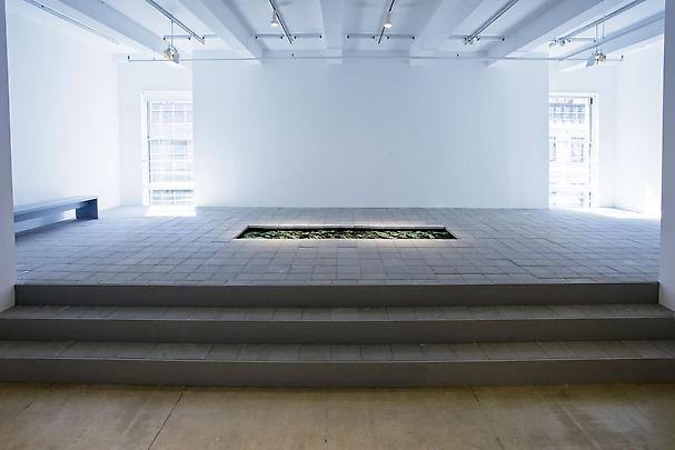 <b>Bajo La Superficie (Under the Surface)</b>, 2011 Image