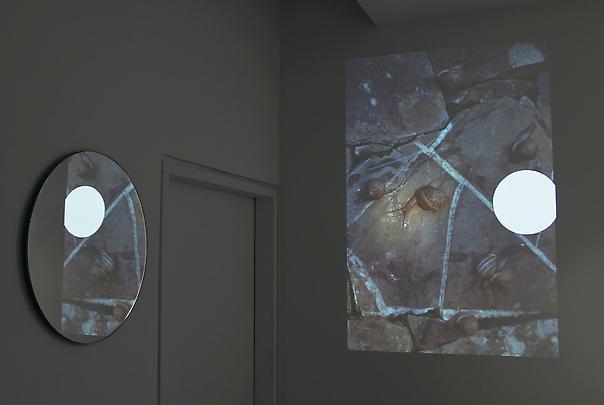 LOTHAR BAUMGARTEN <b>Vector Field</b>, 2002 Image