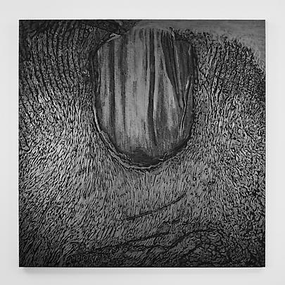<b>Pelle di grafite - Riflesso di Vanadite</b>, 2007 Image