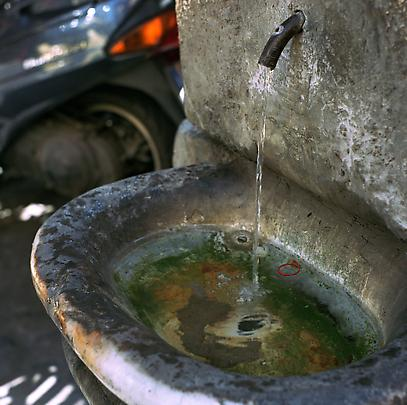 <b>Basin in Rome 1</b>, 2005 Image