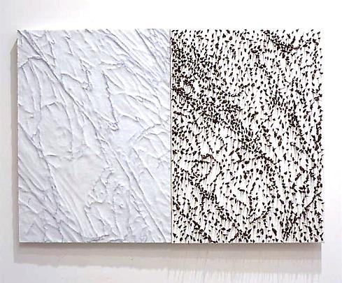 <b>Pelle di Marmo su Spine d'Acacia (Silvia)</b>, 2001 Image