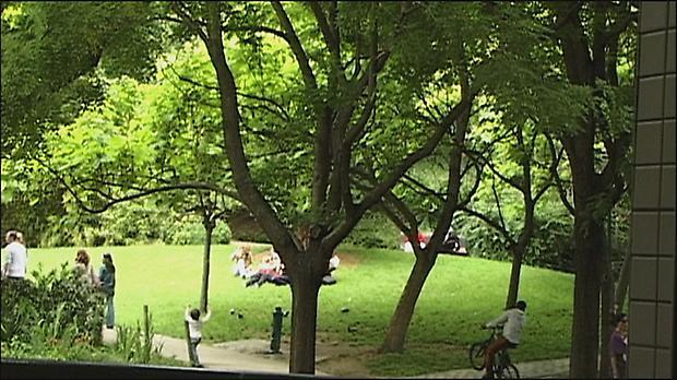 <b>Maniac Summer</b>, 2009 Image