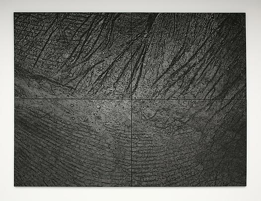 <b>Pelle di grafite (riflesso di uraninite) [The skin of graphite (reflexion of uraninite)]</b>, 2003-2006. Graphite on canvas 300 x 400 cm 4 elements each: 150 x 200 cm Inv.#12124 Image