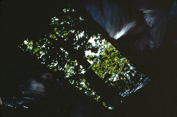 GABRIEL OROZCO <b>Shadow of Reflection (La sombra del reflecto)</b>, 1990 Image