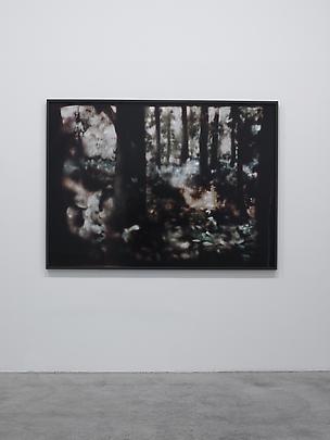 <i>Woods (Kuhle Wampe) #1</i>, 2014 Image