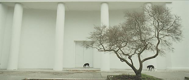<b>Giardini</b>, 2009 Image