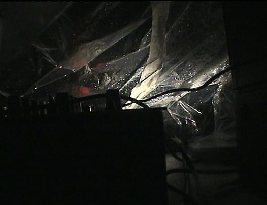 ANRI SALA <b>Mixed Behaviour</b>, 2003 Image