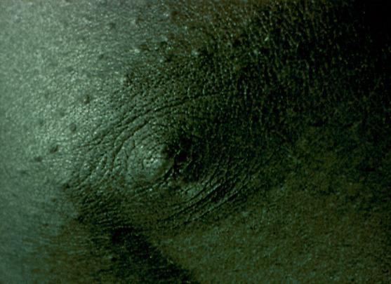 <b>Cold Breath</b>, 1999 Image