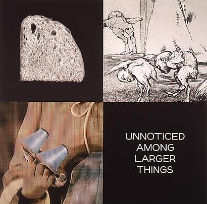 <b>Tetrad Series: Unnoticed Among Larger Things</b>, 1999 Image