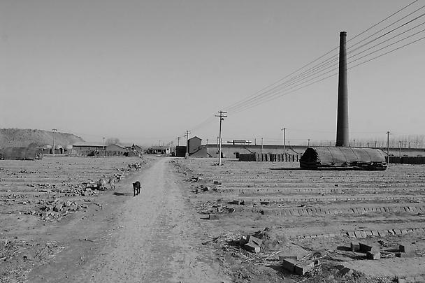 <b>East of Que Village (Dog)</b>, 2007 Image