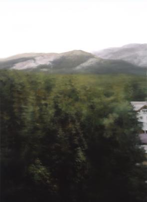 <b>891-1 Waldhaus</b>, 2004 Image