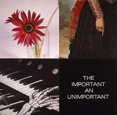 <b>Tetrad Series: The Important And Unimportant</b>, 1999 Image