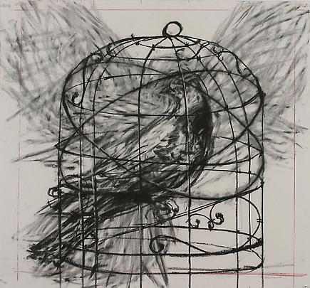 Bird Cages Drawings Drawing From 'preparing The