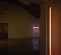 Dan Flavin