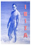 Katharina Fritsch <i>1. Postkarte (Ibiza)</i> 2003 Silkscreen on sintra 79 x 54 inches; 201 x 137 cm