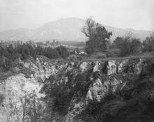 <I>Eroding edge of an abandoned citrus growing estate. East Highlands, California</i> 1982 Gelatin silver print Image: 18 1/2 x 15 inches; 47 x 38 cm Sheet: 16 x 20 inches; 41 x 51 cm